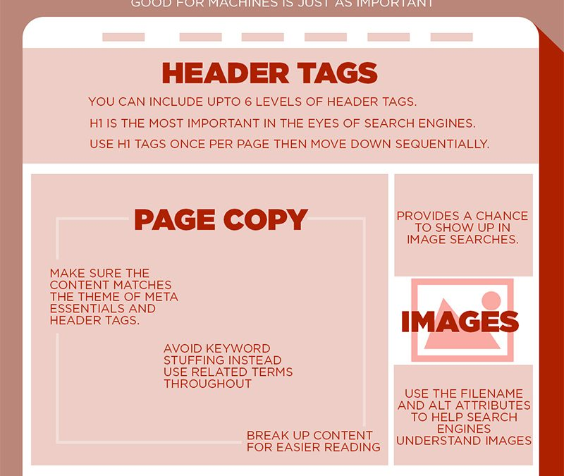 SEO Basics: How to Optimise a Web Page for Higher Google Rankings